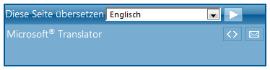 Sreenshot of the translator app what should appear